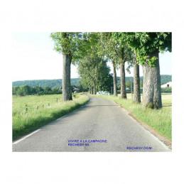 Route de campagne entrée du village de Réchésy
